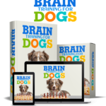 Brain Training For Dogs - theblogpoint.com